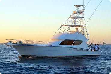 Cabo charter fishing boat, Hurricane - 50 Foot Hatteras