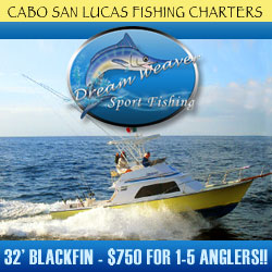 Cabo fishing charters with Dreamweaver Sportfishing