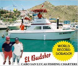 El Budster fishing charters in Cabo San Lucas
