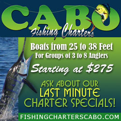 Cabo fishing charters starting at $275