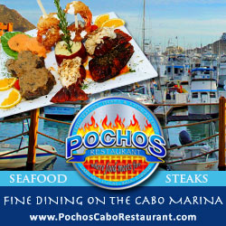 Marina front dining in Cabo, Pochos Seafood Restaurant