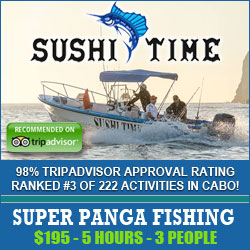 Panga Fishing in Cabo from $195 for 3 people