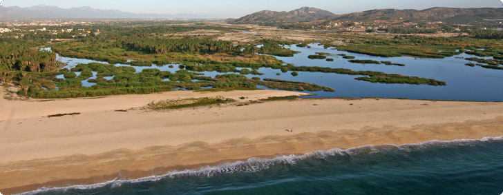 Estuary beach in San Jose del Cabo