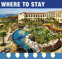 Best Places to Stay in Cabo