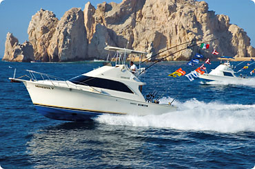 Cabo fishing charters with Minerva's Baja Tackle