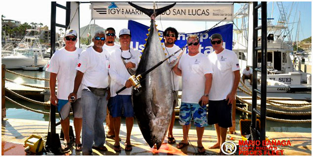Guy Yocum's World Record Yellowfin Tuna caught south of Cabo San Lucas