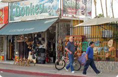 Leather shop and factory in Cabo San Lucas, the Happy Donkey