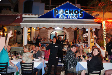 Pochos Seafood Restaurant On The Cabo San Lucas Marina